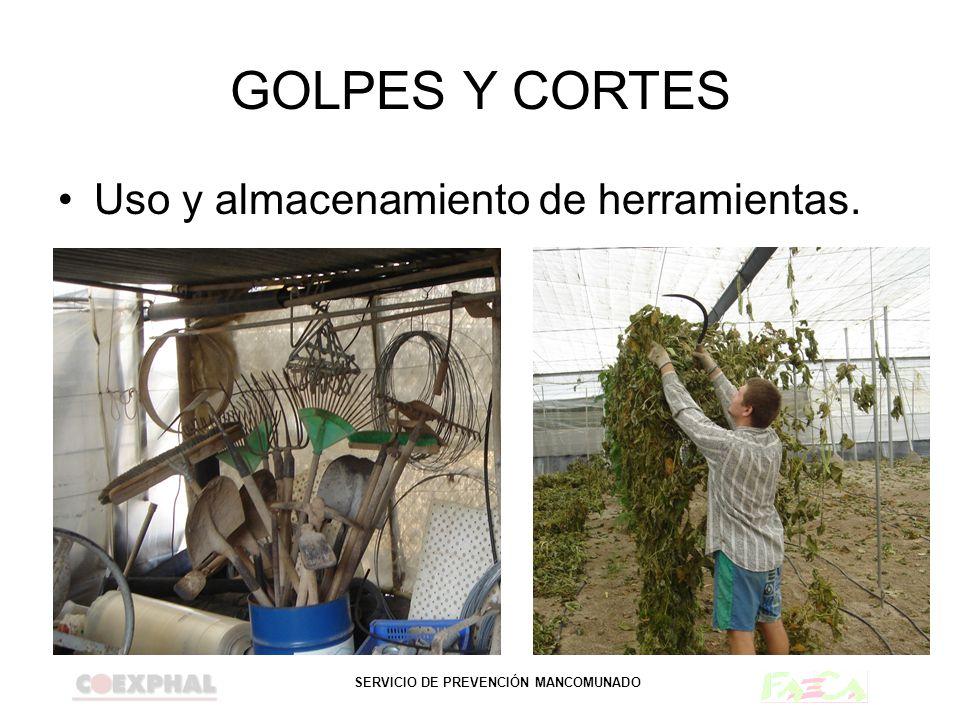SERVICIO DE PREVENCIÓN MANCOMUNADO GOLPES Y CORTES Uso y almacenamiento de herramientas.