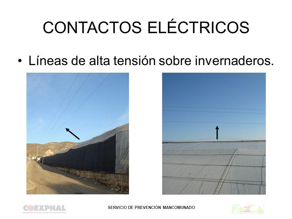 SERVICIO DE PREVENCIÓN MANCOMUNADO CONTACTOS ELÉCTRICOS Líneas de alta tensión sobre invernaderos.