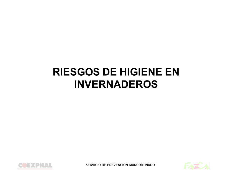 SERVICIO DE PREVENCIÓN MANCOMUNADO RIESGOS DE HIGIENE EN INVERNADEROS