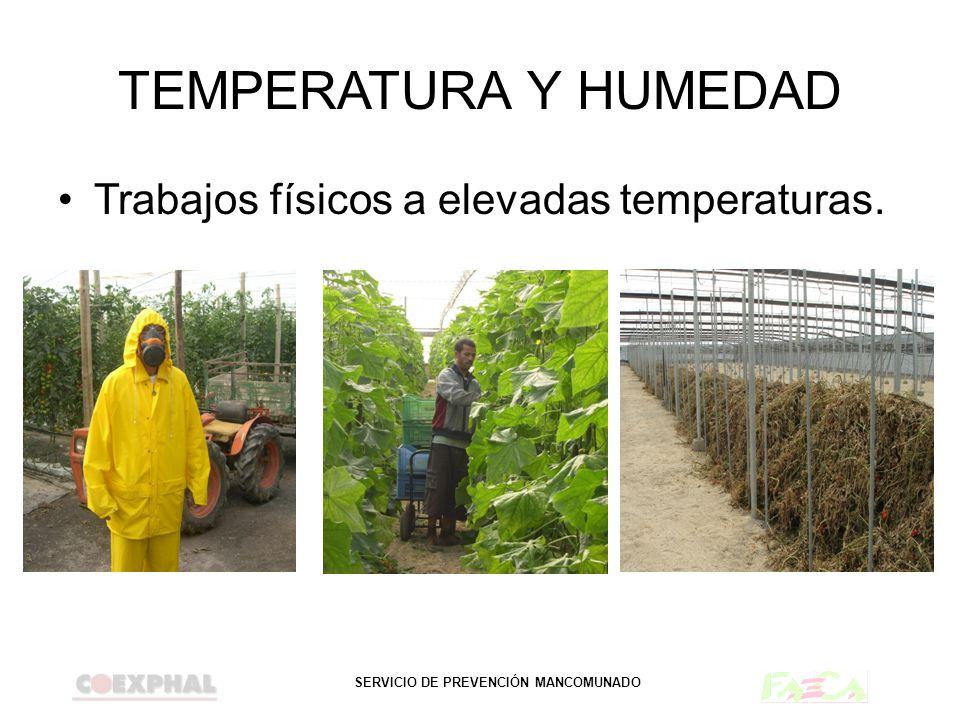 SERVICIO DE PREVENCIÓN MANCOMUNADO TEMPERATURA Y HUMEDAD Trabajos físicos a elevadas temperaturas.