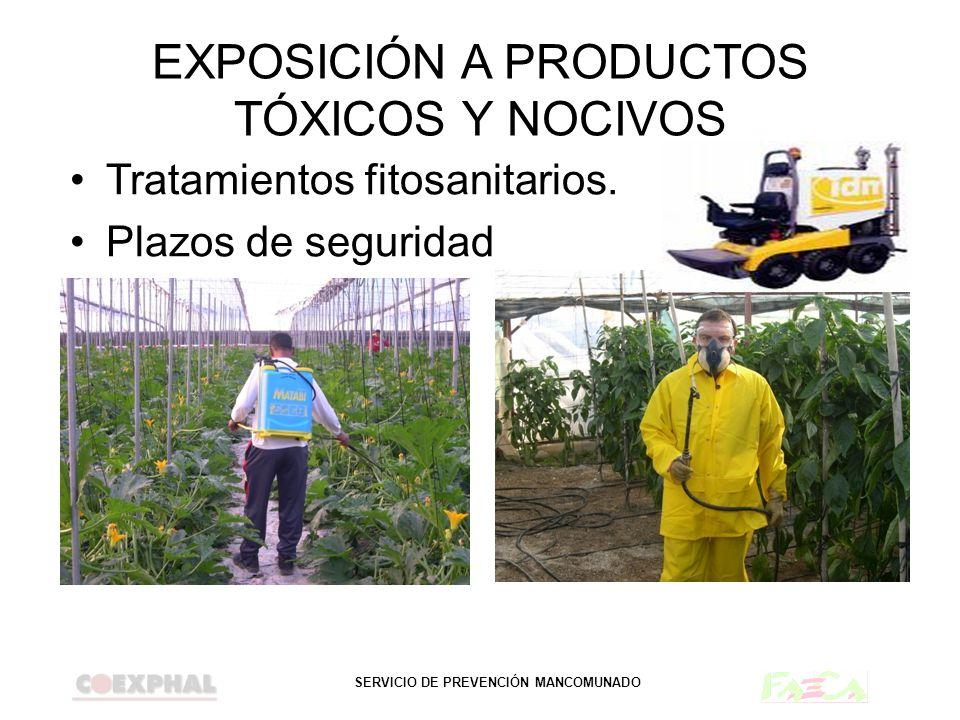 SERVICIO DE PREVENCIÓN MANCOMUNADO EXPOSICIÓN A PRODUCTOS TÓXICOS Y NOCIVOS Tratamientos fitosanitarios. Plazos de seguridad