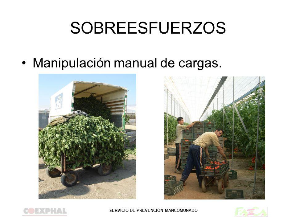 SERVICIO DE PREVENCIÓN MANCOMUNADO SOBREESFUERZOS Manipulación manual de cargas.