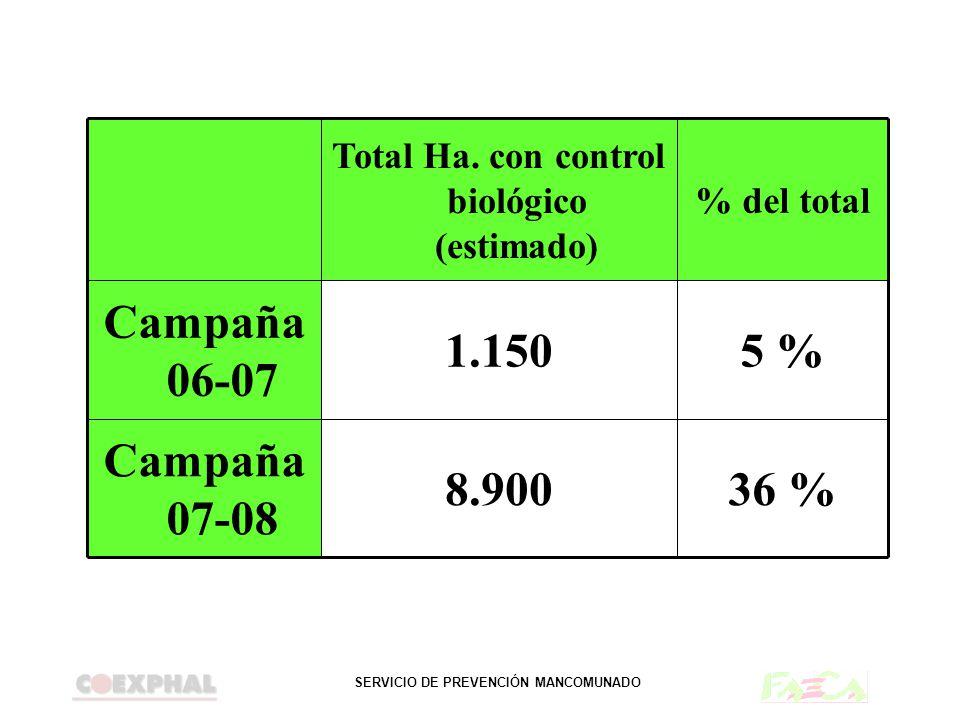 SERVICIO DE PREVENCIÓN MANCOMUNADO 36 %8.900 Campaña 07-08 5 %1.150 Campaña 06-07 % del total Total Ha. con control biológico (estimado)