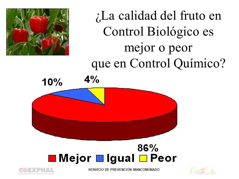 ¿La calidad del fruto en Control Biológico es mejor o peor que en Control Químico?