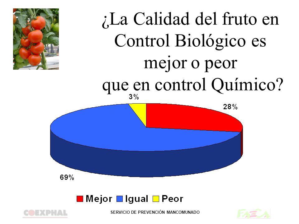 SERVICIO DE PREVENCIÓN MANCOMUNADO ¿La Calidad del fruto en Control Biológico es mejor o peor que en control Químico?