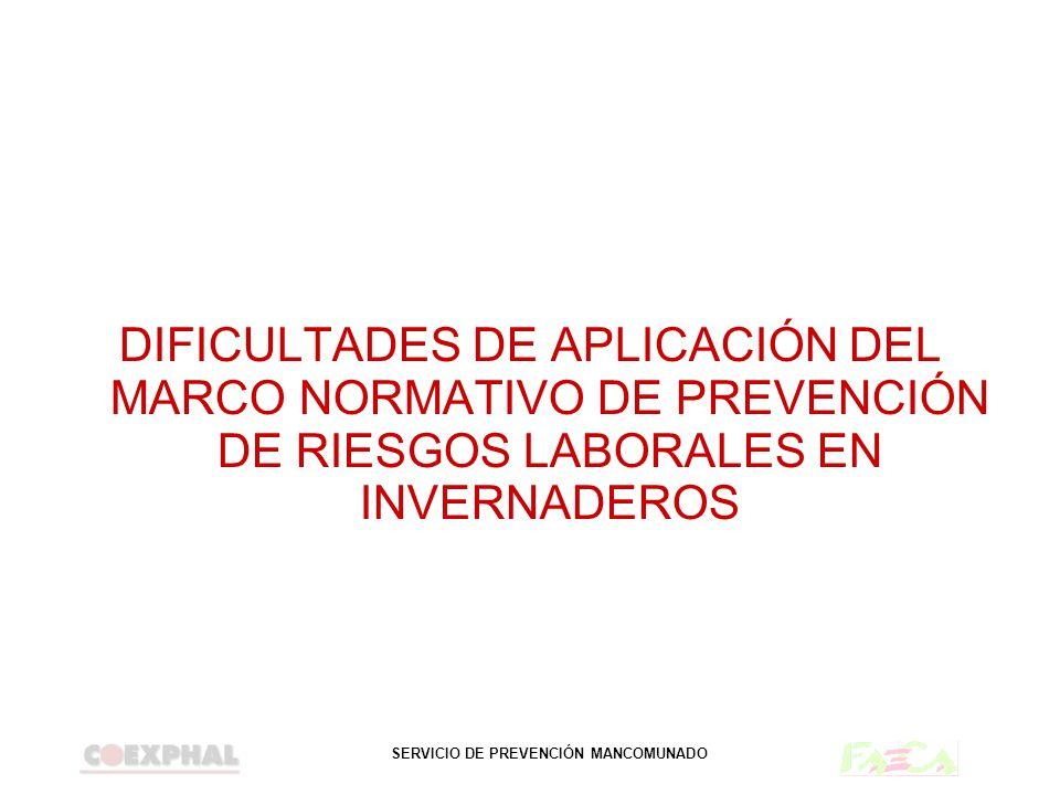 SERVICIO DE PREVENCIÓN MANCOMUNADO DIFICULTADES DE APLICACIÓN DEL MARCO NORMATIVO DE PREVENCIÓN DE RIESGOS LABORALES EN INVERNADEROS