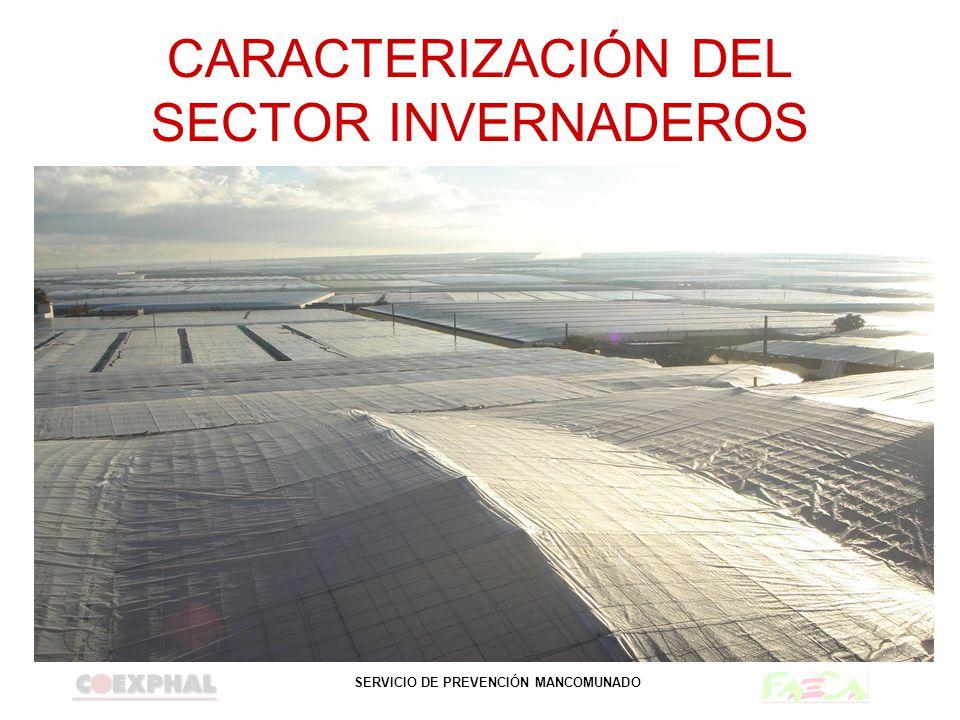 SERVICIO DE PREVENCIÓN MANCOMUNADO EXPOSICIÓN A PRODUCTOS TÓXICOS Y NOCIVOS Almacenamiento de productos fitosanitarios.