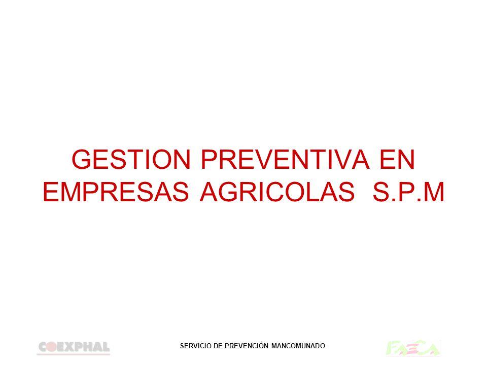 SERVICIO DE PREVENCIÓN MANCOMUNADO GESTION PREVENTIVA EN EMPRESAS AGRICOLAS S.P.M
