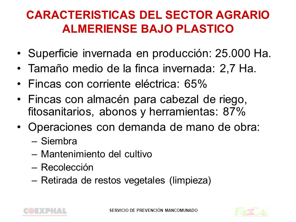 SERVICIO DE PREVENCIÓN MANCOMUNADO CARACTERISTICAS DEL SECTOR AGRARIO ALMERIENSE BAJO PLASTICO Número de empresarios agrícolas: 18.000 Número de trabajadores agrícolas: 54.000 Empleo de mano de obra familiar:1 trabaj./Ha Empleo de mano de obra ajena a la familia: 1,5 trabaj./Ha.