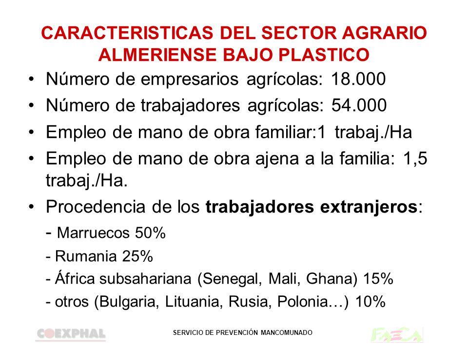 SERVICIO DE PREVENCIÓN MANCOMUNADO CARACTERISTICAS DEL SECTOR AGRARIO ALMERIENSE BAJO PLASTICO Número de empresarios agrícolas: 18.000 Número de traba