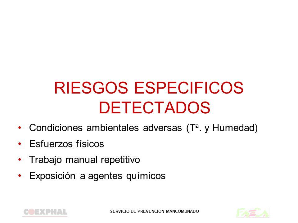 SERVICIO DE PREVENCIÓN MANCOMUNADO RIESGOS ESPECIFICOS DETECTADOS Condiciones ambientales adversas (T a. y Humedad) Esfuerzos físicos Trabajo manual r