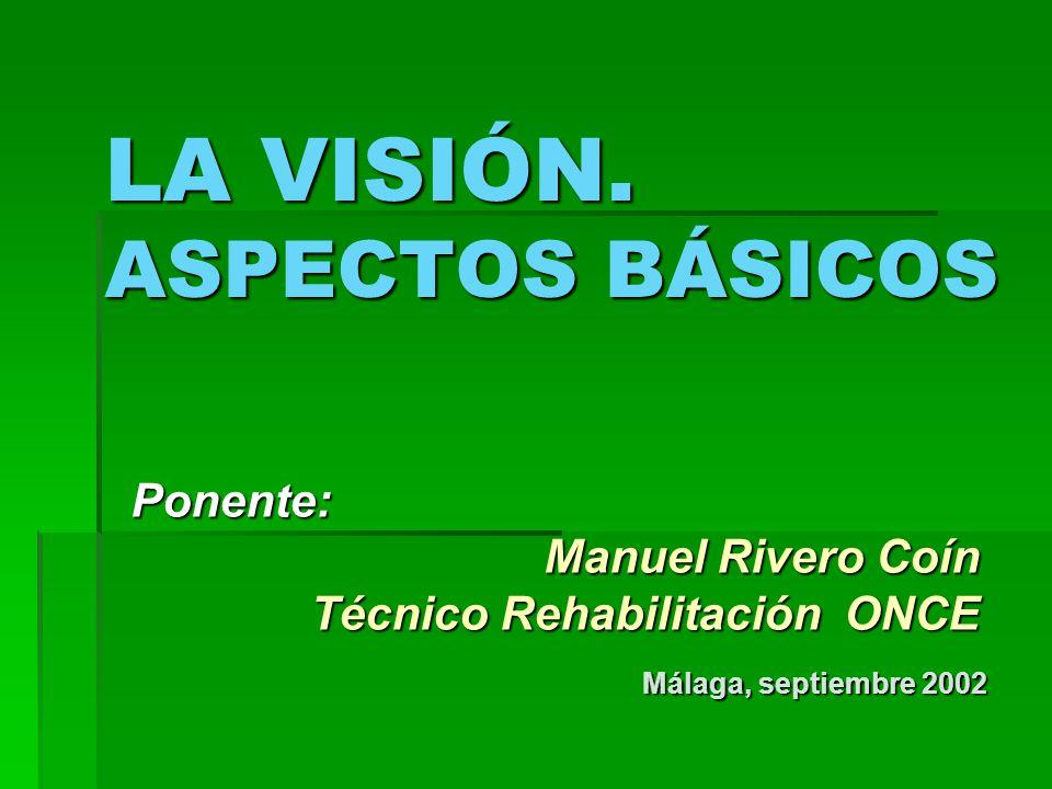 LA VISIÓN. ASPECTOS BÁSICOS Ponente: Manuel Rivero Coín Manuel Rivero Coín Técnico Rehabilitación ONCE Málaga, septiembre 2002