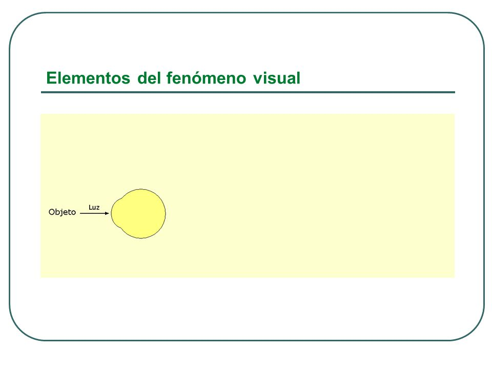 Evaluación del Funcionamiento Visual 1.