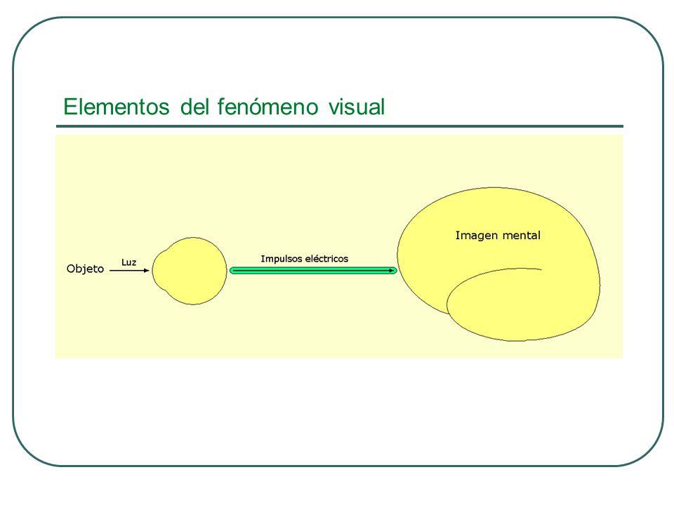VISIÓN CROMÁTICA SENSIBILIDAD AL CONTRASTE TENSIÓN OCULAR BIOMICROSCOPÍA ANGIOGRAFÍA FLUORESCEÍNICA PRUEBAS ELECTROFISIOLÓGICAS ETC Evaluación del Funcionamiento Visual