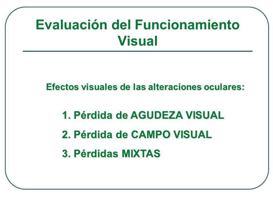 Evaluación del Funcionamiento Visual 1. Pérdida de AGUDEZA VISUAL 2. Pérdida de CAMPO VISUAL 3. Pérdidas MIXTAS Efectos visuales de las alteraciones o