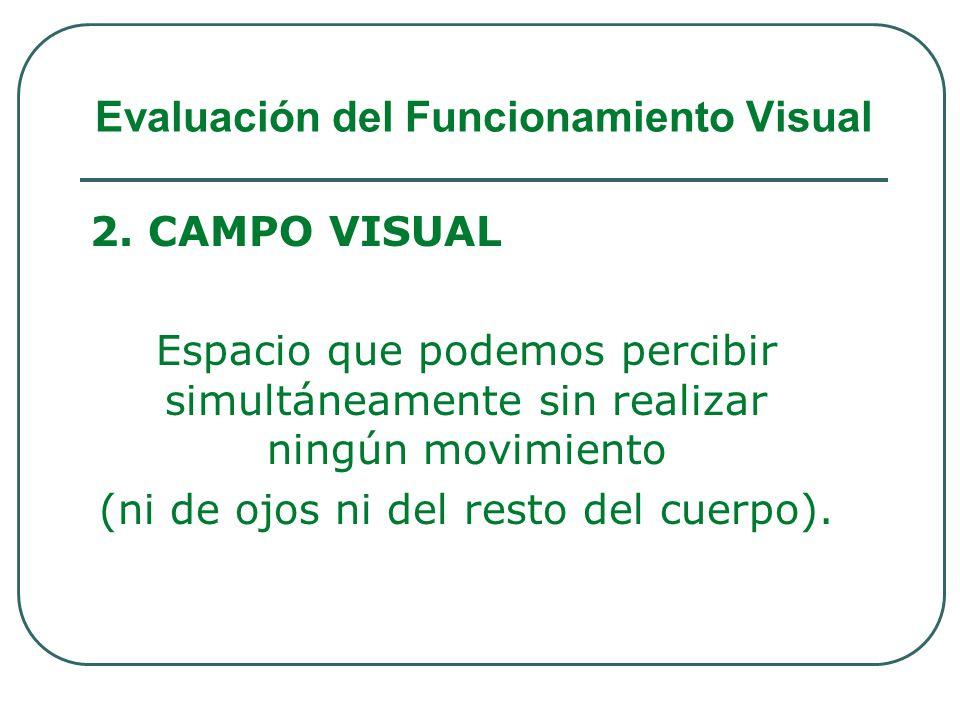 2. CAMPO VISUAL Espacio que podemos percibir simultáneamente sin realizar ningún movimiento (ni de ojos ni del resto del cuerpo). Evaluación del Funci