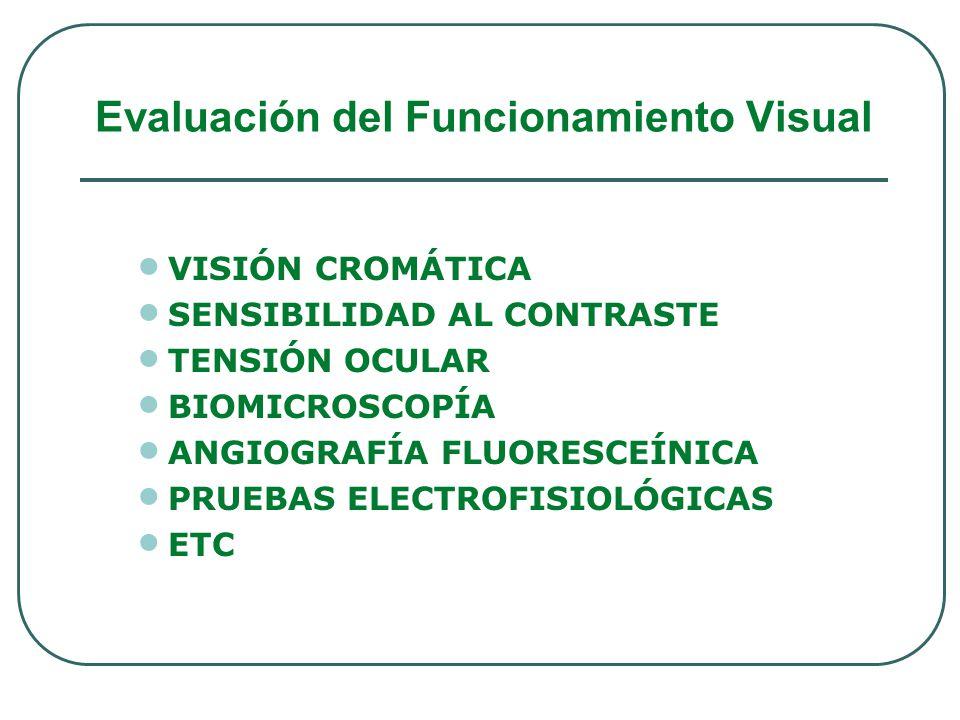 VISIÓN CROMÁTICA SENSIBILIDAD AL CONTRASTE TENSIÓN OCULAR BIOMICROSCOPÍA ANGIOGRAFÍA FLUORESCEÍNICA PRUEBAS ELECTROFISIOLÓGICAS ETC Evaluación del Fun