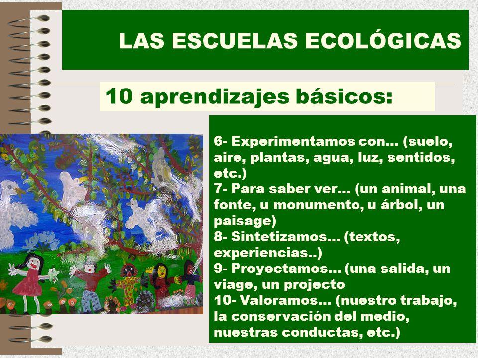 27 LAS ESCUELAS ECOLÓGICAS 10 aprendizajes básicos: 6- Experimentamos con… (suelo, aire, plantas, agua, luz, sentidos, etc.) 7- Para saber ver… (un an