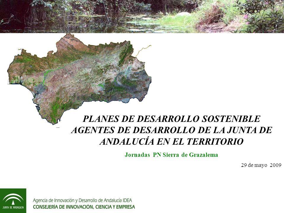 PLANES DE DESARROLLO SOSTENIBLE AGENTES DE DESARROLLO DE LA JUNTA DE ANDALUCÍA EN EL TERRITORIO Jornadas PN Sierra de Grazalema 29 de mayo 2009