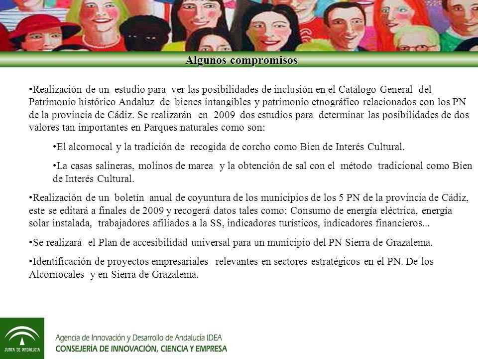 Algunos compromisos Algunos compromisos Realización de un estudio para ver las posibilidades de inclusión en el Catálogo General del Patrimonio histórico Andaluz de bienes intangibles y patrimonio etnográfico relacionados con los PN de la provincia de Cádiz.