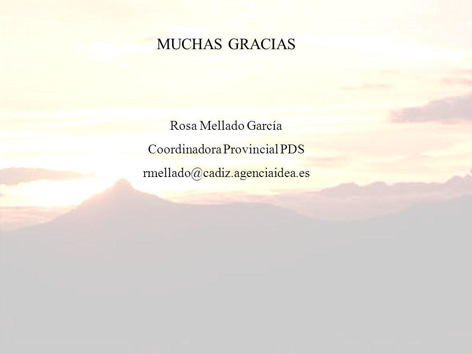 MUCHAS GRACIAS Rosa Mellado García Coordinadora Provincial PDS rmellado@cadiz.agenciaidea.es