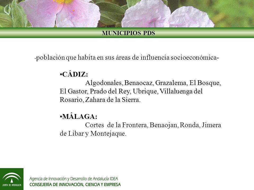 Decreto 99/2009, de 27 de abril, regulador de los fondos de apoyo a las Pymes Agroalimentarias, Turísticas y Comerciales y de Industrias Culturales, y del Fondo para la Internacionalización de la Economía Andaluza.