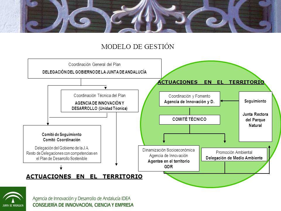 Coordinación General del Plan DELEGACIÓN DEL GOBIERNO DE LA JUNTA DE ANDALUCÍA Coordinación Técnica del Plan AGENCIA DE INNOVACIÓN Y DESARROLLO (Unidad Técnica) Comité de Seguimiento Comité Coordinación Delegación del Gobierno de la J.A.