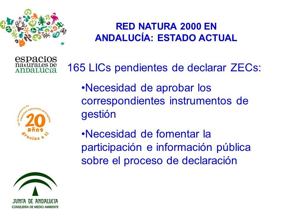 RED NATURA 2000 EN ANDALUCÍA: ESTADO ACTUAL 165 LICs pendientes de declarar ZECs: Necesidad de aprobar los correspondientes instrumentos de gestión Ne