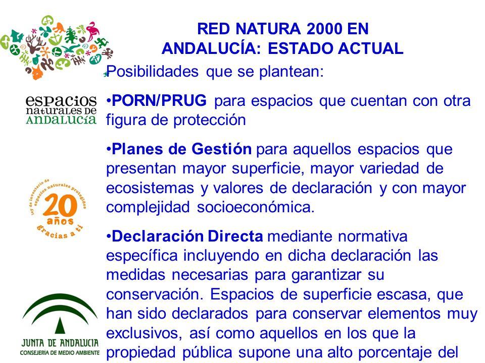 RED NATURA 2000 EN ANDALUCÍA: ESTADO ACTUAL Posibilidades que se plantean: PORN/PRUG para espacios que cuentan con otra figura de protección Planes de