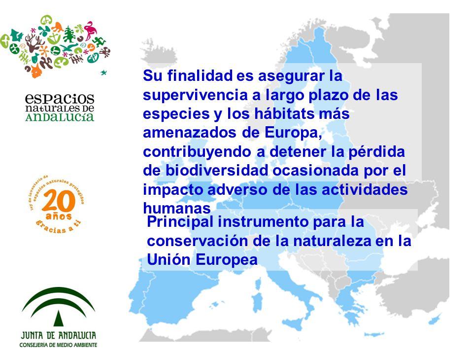 Principal instrumento para la conservación de la naturaleza en la Unión Europea Su finalidad es asegurar la supervivencia a largo plazo de las especie
