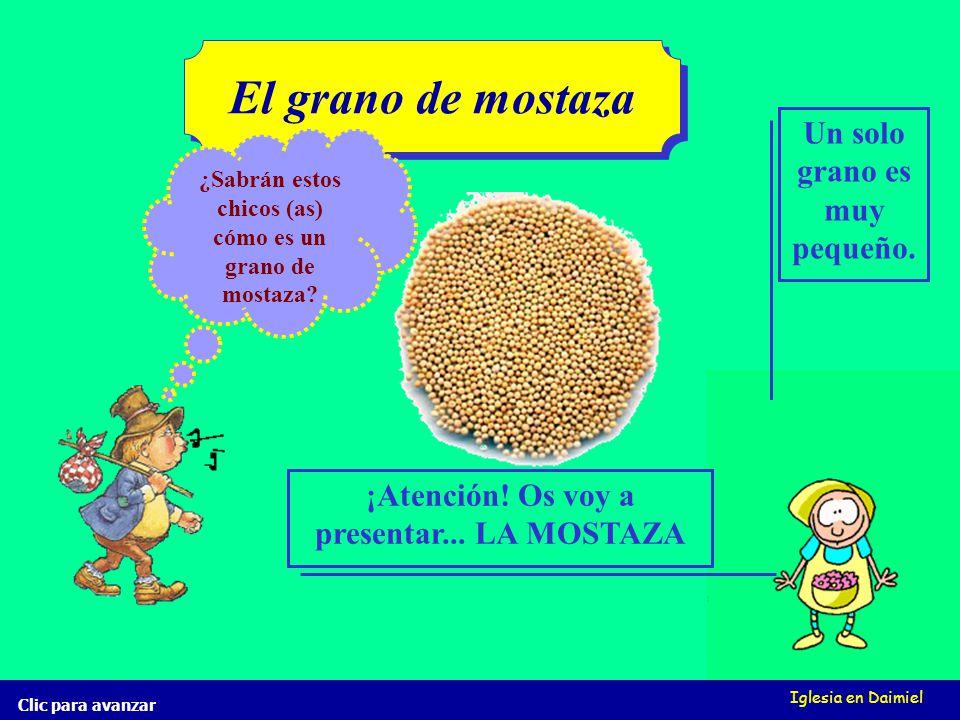 Iglesia en Daimiel El grano de mostaza Clic para avanzar ¿Sabrán estos chicos (as) cómo es un grano de mostaza.