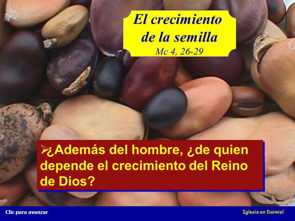 El crecimiento de la semilla Mc 4, 26-29 Iglesia en Daimiel Clic para avanzar ¿Crece una semilla si no se siembra.