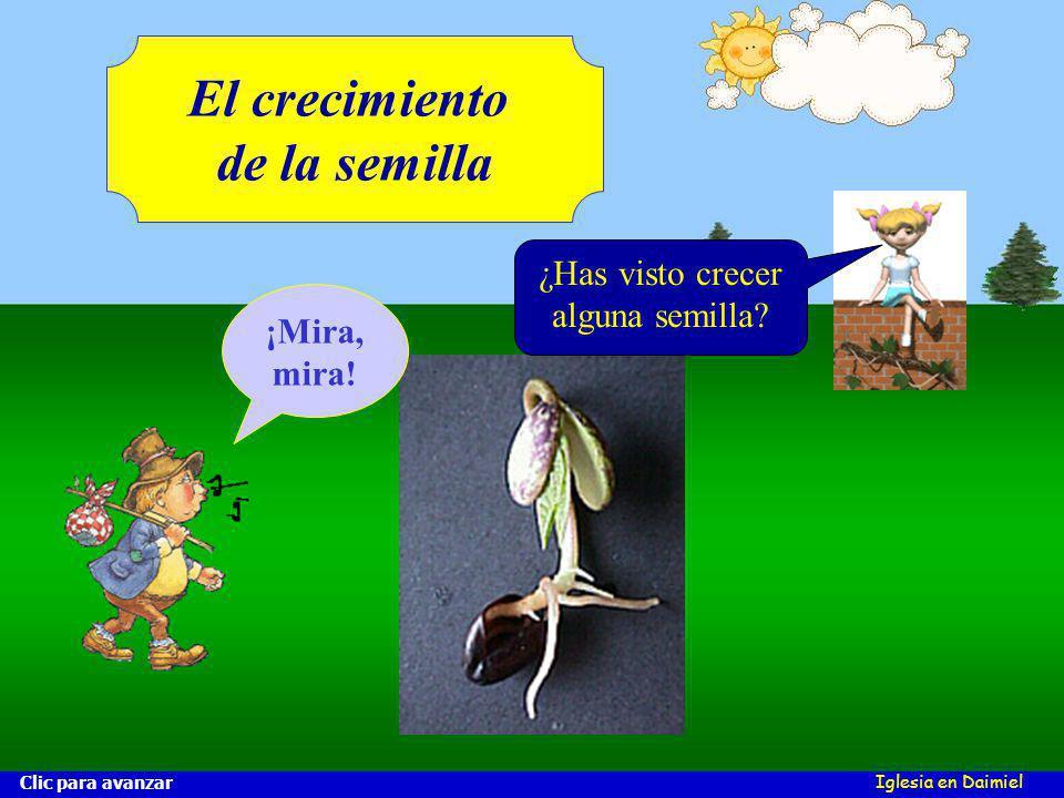 Iglesia en Daimiel El crecimiento de la semilla Clic para avanzar ¡Mira, mira.