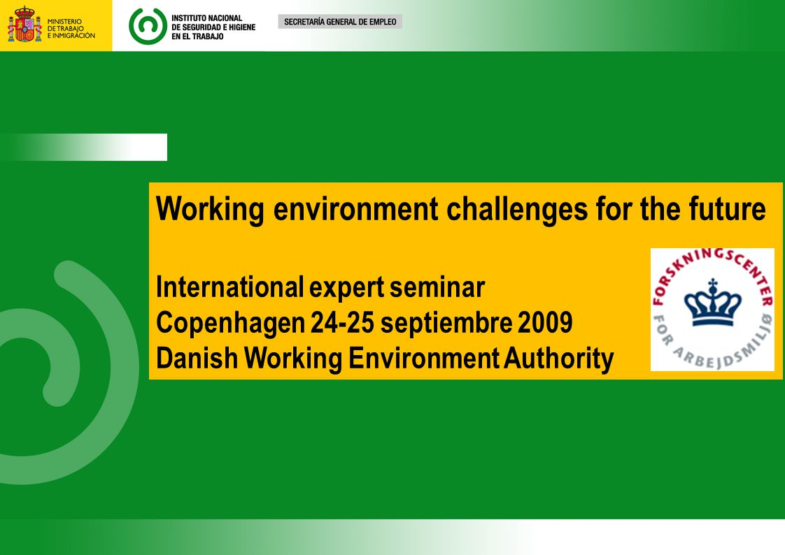 Working environment challenges for the future International expert seminar Copenhagen 24-25 septiembre 2009 Danish Working Environment Authority