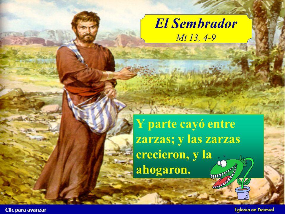 El Sembrador Mt 13, 4-9 Iglesia en Daimiel Parte cayó entre pedregales, donde no había mucha tierra; y nació, pero no tenía profundidad la tierra: Cuando salió el sol, se quemó y se secó, porque no tenía raíz.
