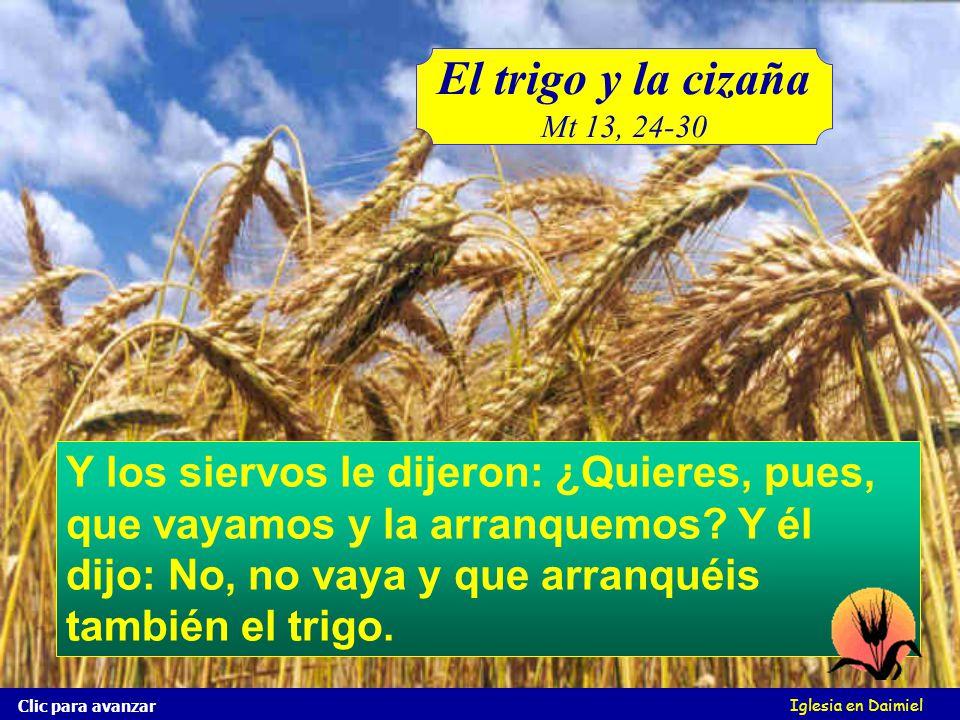 Iglesia en Daimiel Clic para avanzar Y los siervos del padre de la familia, le dijeron: Señor, ¿no sembraste buena simiente en tu campo? ¿de dónde, pu