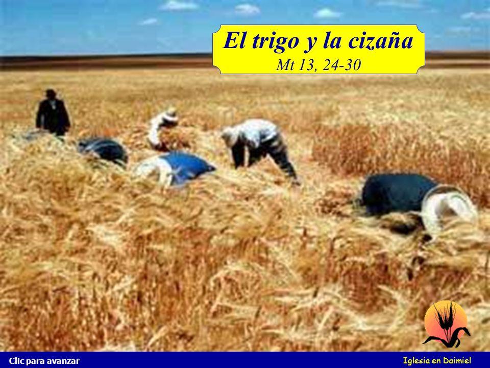 Iglesia en Daimiel Y los siervos le dijeron: ¿Quieres, pues, que vayamos y la arranquemos? Y él dijo: No, no vaya y que arranquéis también el trigo. C