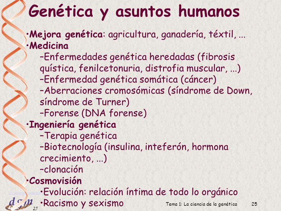 24 Dr. Antonio Barbadilla Tema 1: La ciencia de la genética24 Impacto de la genética en otras áreas de la actividad humana MedicinaAgriculturaDerechoS