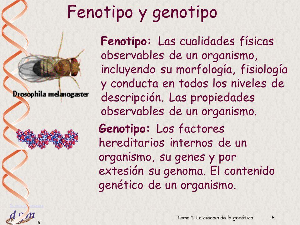 5 Dr. Antonio Barbadilla Tema 1: La ciencia de la genética5 Genotipo Fenotipo Expresión génica, desarrollo Siguiente generación Transmisión Lo único q