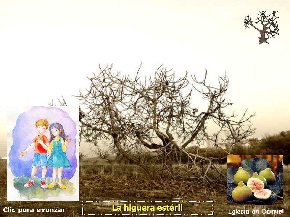 Clic para avanzar Iglesia en Daimiel La higuera estéril En nuestra vida: en los estudios, el trabajo y la familia...