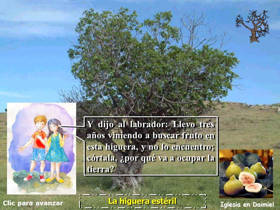 Clic para avanzar Iglesia en Daimiel La higuera estéril ¡Hasta la próxima.