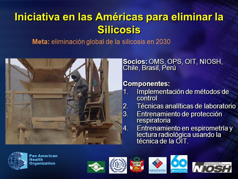 Pan American Health Organization Iniciativa en las Américas para eliminar la Silicosis Socios: OMS, OPS, OIT, NIOSH, Chile, Brasil, Perú Componentes: