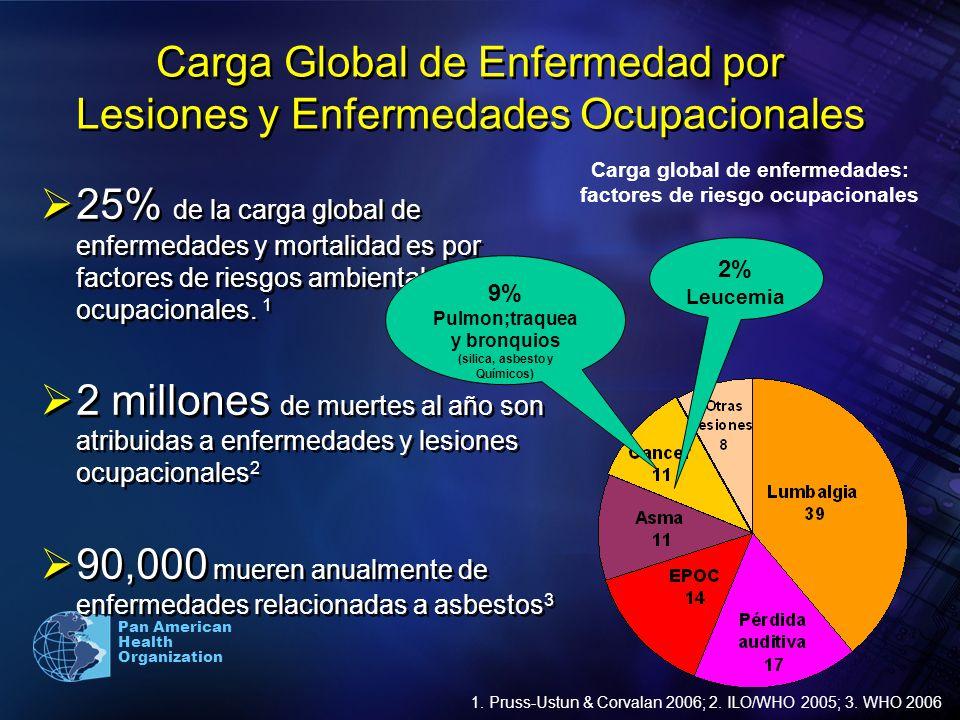 Pan American Health Organization Carga Global de Enfermedad por Lesiones y Enfermedades Ocupacionales 25% de la carga global de enfermedades y mortali