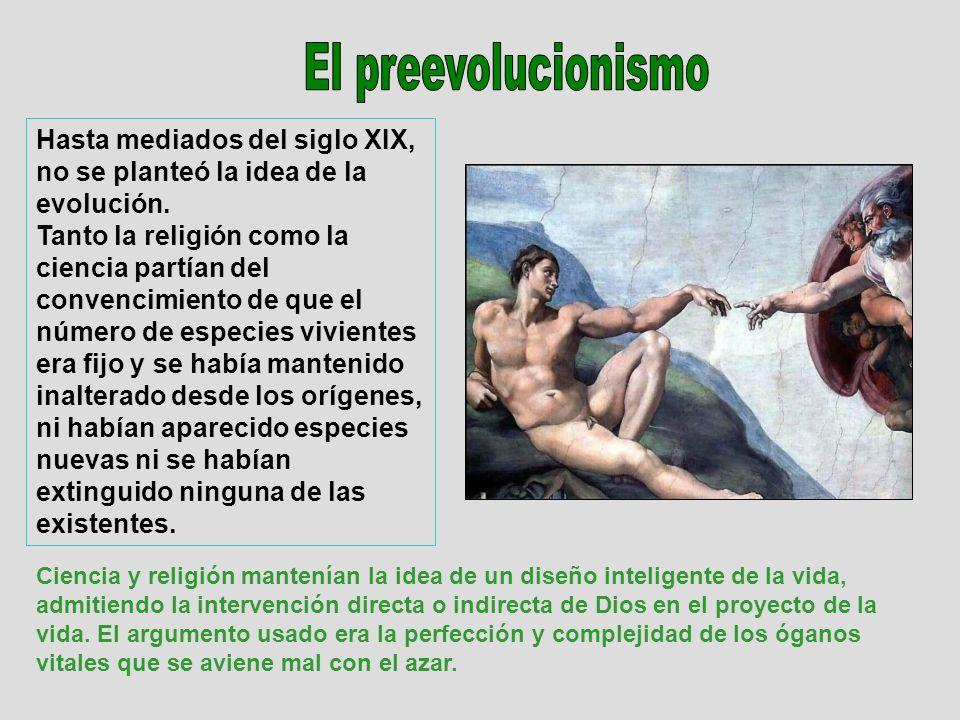 Hasta mediados del siglo XIX, no se planteó la idea de la evolución. Tanto la religión como la ciencia partían del convencimiento de que el número de