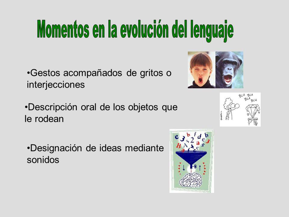 Gestos acompañados de gritos o interjecciones Descripción oral de los objetos que le rodean Designación de ideas mediante sonidos