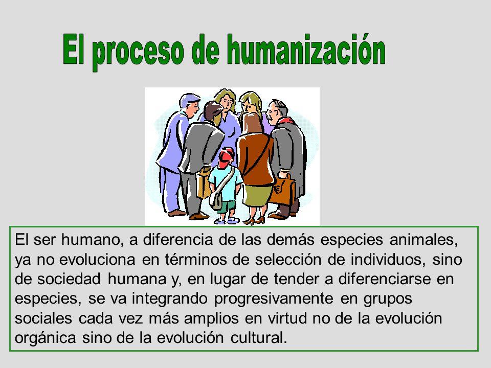 El ser humano, a diferencia de las demás especies animales, ya no evoluciona en términos de selección de individuos, sino de sociedad humana y, en lugar de tender a diferenciarse en especies, se va integrando progresivamente en grupos sociales cada vez más amplios en virtud no de la evolución orgánica sino de la evolución cultural.