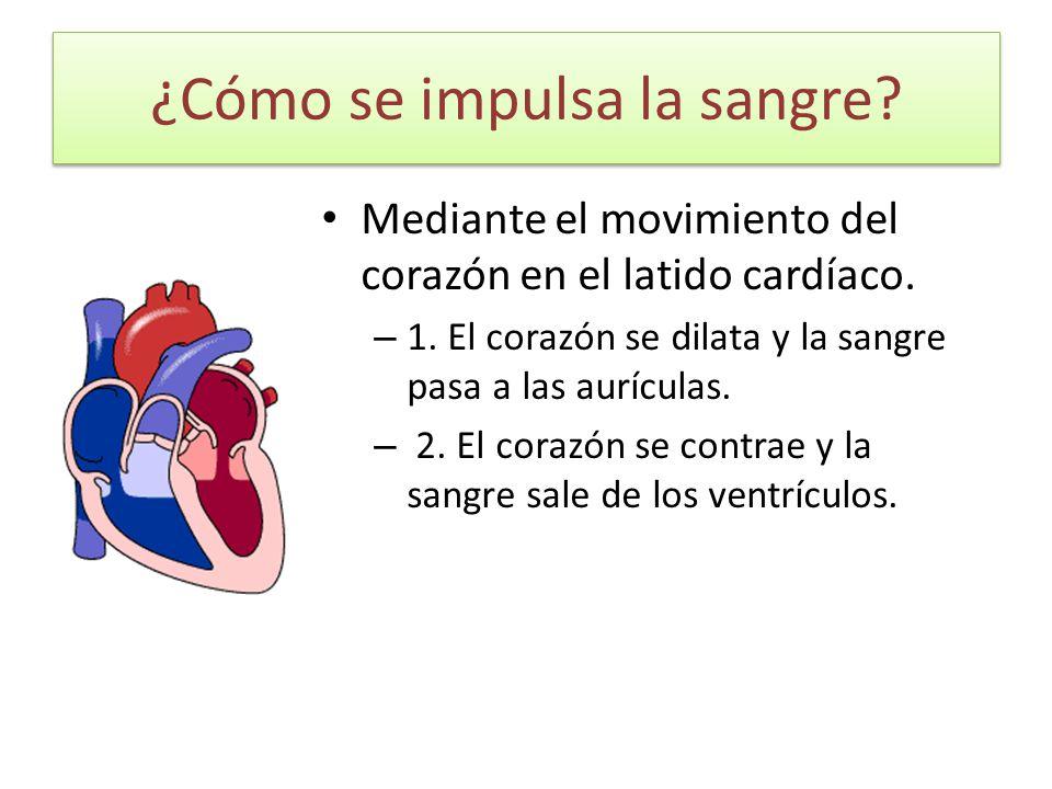 ¿Cómo se impulsa la sangre? Mediante el movimiento del corazón en el latido cardíaco. – 1. El corazón se dilata y la sangre pasa a las aurículas. – 2.
