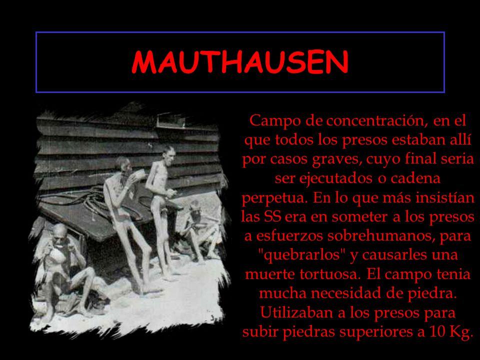MAUTHAUSEN Campo de concentración, en el que todos los presos estaban allí por casos graves, cuyo final seria ser ejecutados o cadena perpetua. E n lo
