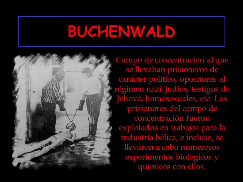 BUCHENWALD Campo de concentración al que se llevaban prisioneros de carácter político, opositores al régimen nazi, judíos, testigos de Jehová, homosexuales, etc.
