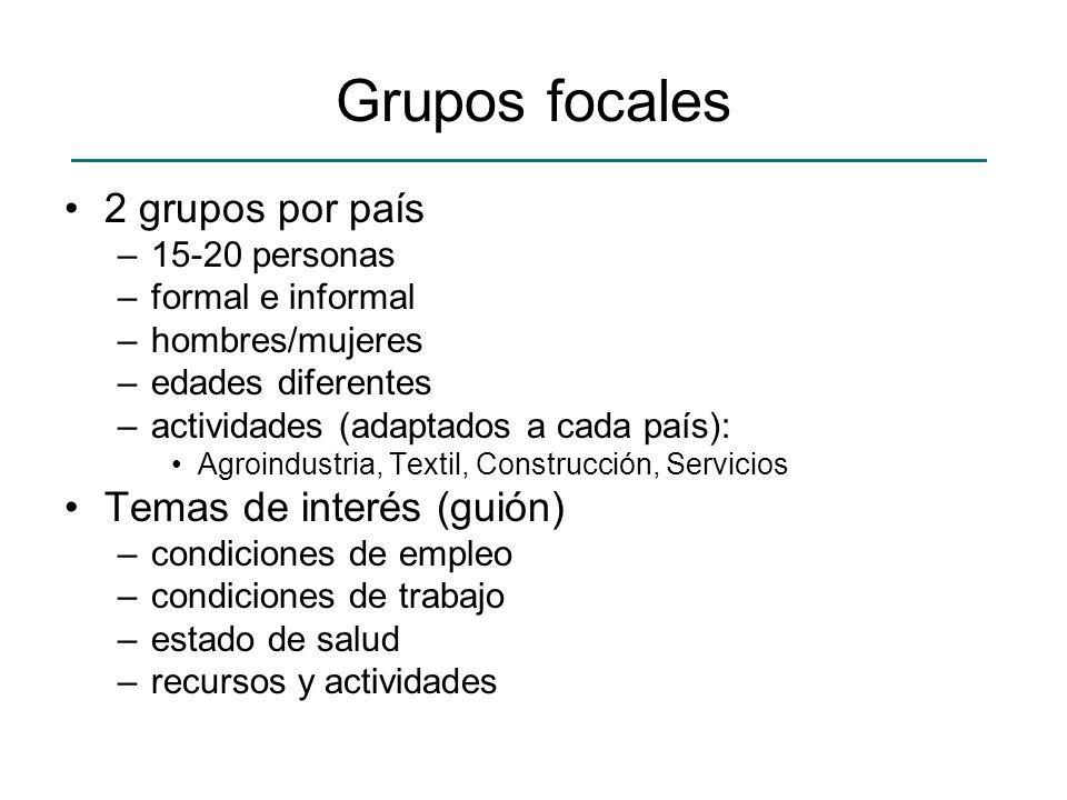 Grupos focales 2 grupos por país –15-20 personas –formal e informal –hombres/mujeres –edades diferentes –actividades (adaptados a cada país): Agroindu